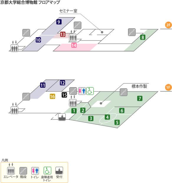 京都大学総合博物館 フロアマップ