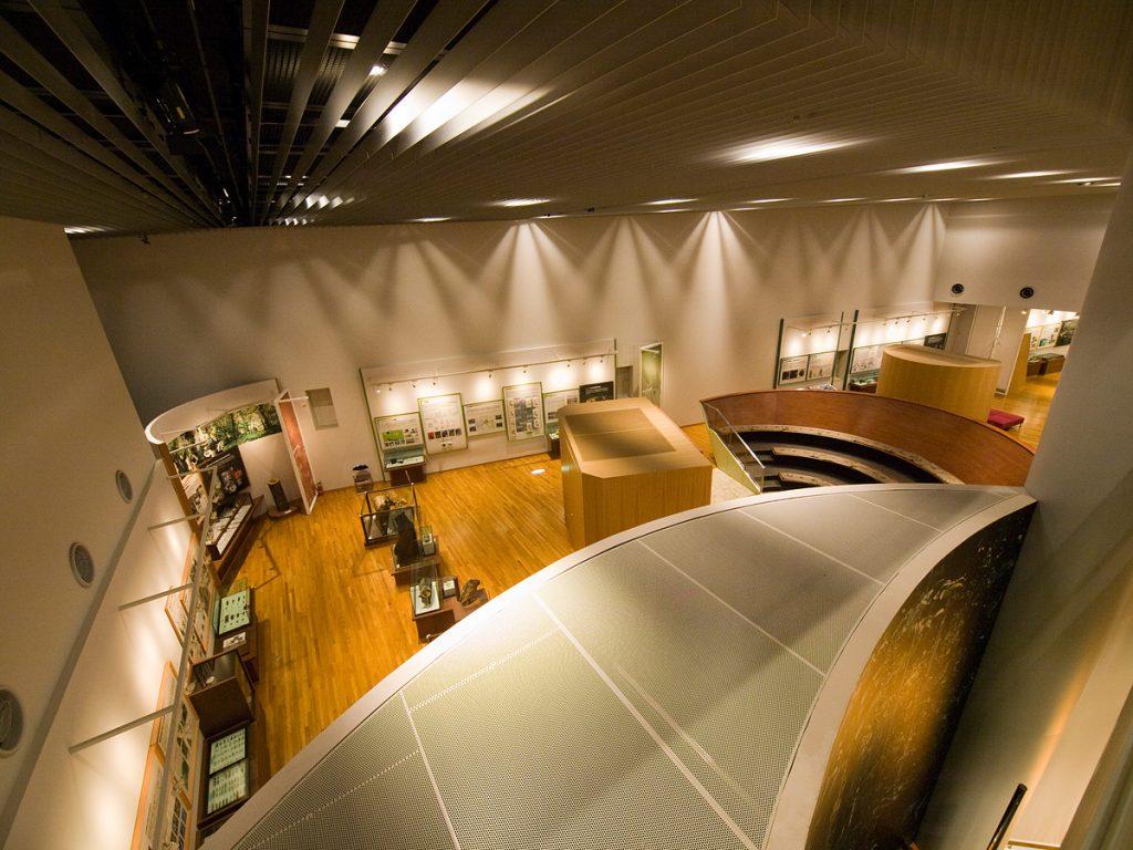 自然史展示室1階全景